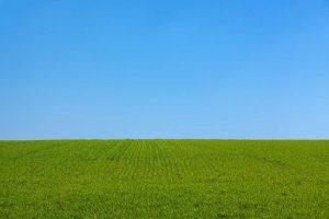 Gasóleo agrícola Pozoblanco - Gasóleos Carpovi